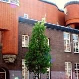 Амстердамская школа